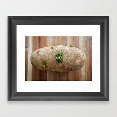 The Blooming Potato Framed Art Print