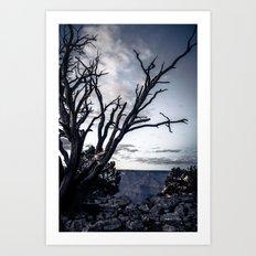 Tree at Grand Canyon Art Print