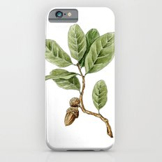 Live Oak Slim Case iPhone 6s