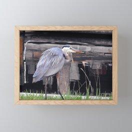 Great Blue Heron Waiting Framed Mini Art Print