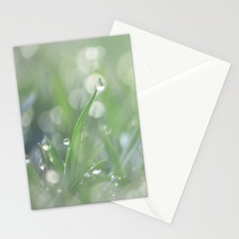 Microcosmos Stationery Cards