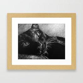 HERSCHEL THE CAT Framed Art Print