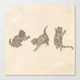 Furball Canvas Print