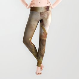Kitten | Chaton Leggings