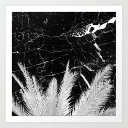 Fresh White Palm Tree on Black Granite Art Print