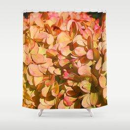 Cream and Pink Hydrangeas Shower Curtain