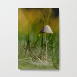 Fragile Beauty Metal Print