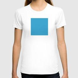 DPCSD Dark bcyan color T-shirt