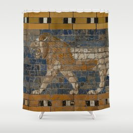 Processional Way - Babylon Shower Curtain
