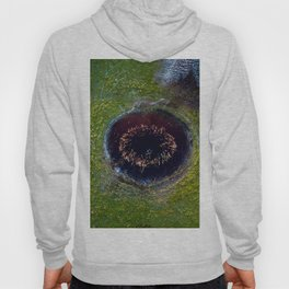 The Eye of Reed Hoody