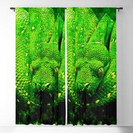 green tree python snake splatter watercolor Blackout Curtain