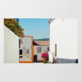 Obidos, Portugal (RR 177) Analog 6x6 odak Ektar 100 Rug