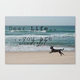 Dear Life... Canvas Print
