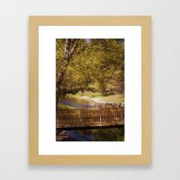 Footbridge Framed Art Print