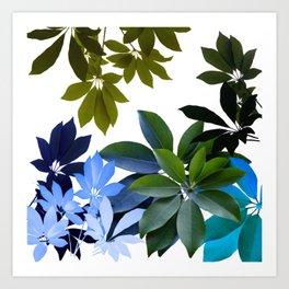 Leaves, Botaical Composition Art Print