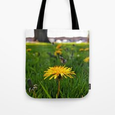 Dandelion closeup Tote Bag