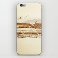 nautical iPhone & iPod Skins featuring Nautical  by Sylvia C
