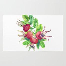 dog-rose watercolor botanical illustration Rug