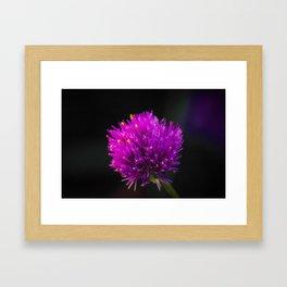 Purple Flower Spike by Reay of Light Photography Framed Art Print