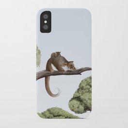 Common Ringtail Possum (Pseudocheirus peregrinus) iPhone Case