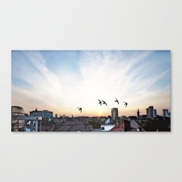 Fun with swifts Canvas Print