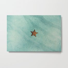 Starfish Aquamarine Metal Print