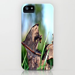 spring sprang early iPhone Case