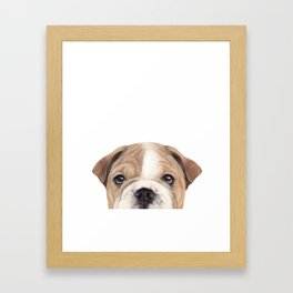Bulldog Original painting Dog illustration original painting print Framed Art Print