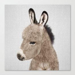 Donkey - Colorful Canvas Print