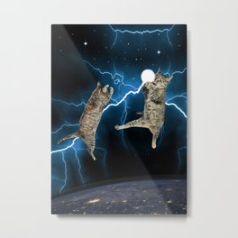 CAT FIGHT  Metal Print