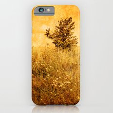 Old Picture of Landscape Slim Case iPhone 6s