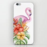 flamingo iPhone & iPod Skins featuring Flamingo by Julia Badeeva