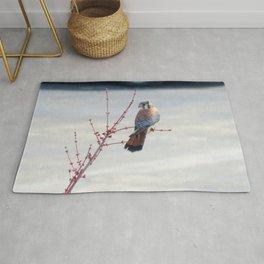Coy Sparrowhawk (Kestrel) 6 Rug