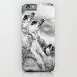 Black and White Meerkats iPhone Case