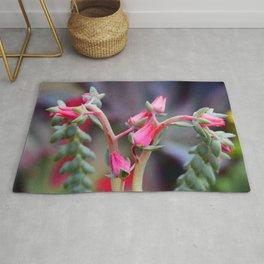 Fine Art Exotic Succulent Flower In Pink-Magenta Red Rug