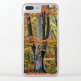 The Beauty of Fall Clear iPhone Case