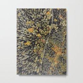 Trees of Life Metal Print