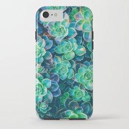 Bright Succulents iPhone Case
