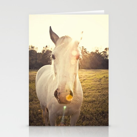 Sunlit Horse Stationery Cards