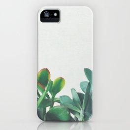 Crassula Group iPhone Case