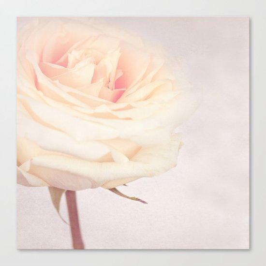 GRAZIE - White Wedding Rose Canvas Print