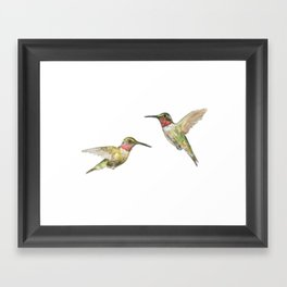 Ruby Throated Hummingbird Watercolor Framed Art Print