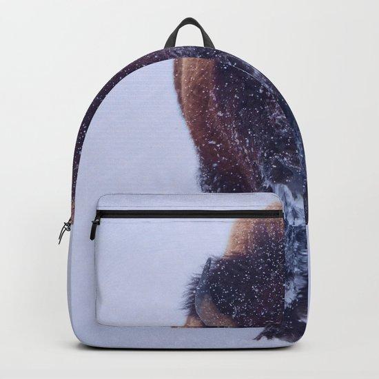 Bison In Snow by olenaart