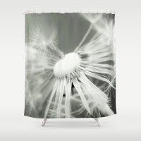 dandelion Shower Curtains featuring dandelion by Falko Follert Art-FF77