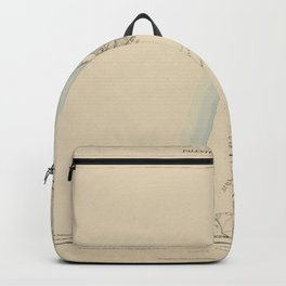 Palestine Exploration Fund Map Backpack