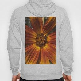 Sunburst Sunflower Hoody