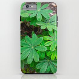 The Star Shrub Of Spite iPhone Case