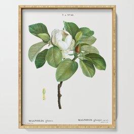 Magnolia (magnolia glauca) from Traite des Arbres et Arbustes que lon cultive en France en pleine te Serving Tray