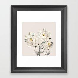 White Peonies Framed Art Print