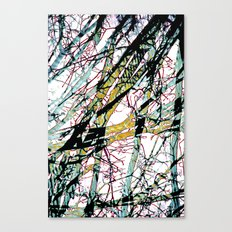 CRACKED CHINA Canvas Print